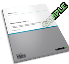 Buch Markenführung im Web 2.0 Matthias Schubert
